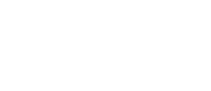 plv-logo_white